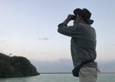 Birding Sian Ka'an